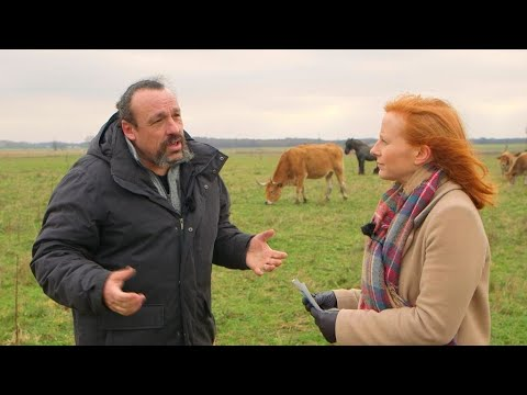 To ban or not to ban? What future for pesticides and GMOs in the EU? (part 1)