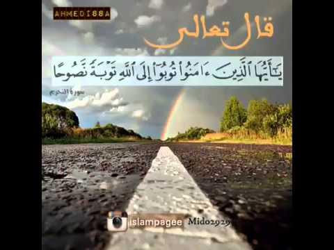 Ahmed issa