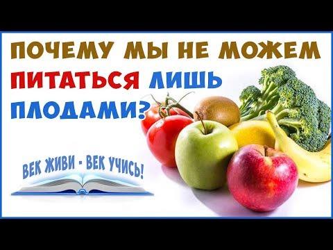 Почему мы не можем питаться только плодами? Кишечник и Биоциды! Бактерии.