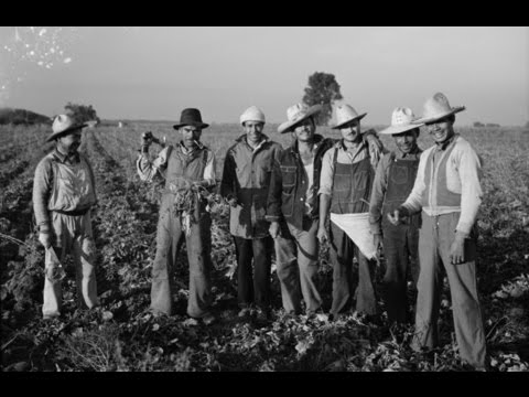 Why Braceros? (1962) Mexican Guest Workers - Reel America Preview