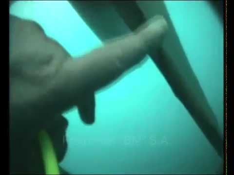 Part of:underwater inspection of Ships