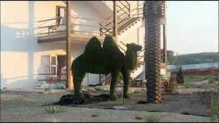 световые фигуры, скульптуры, реклама(Изготовление световых объемных фигур; вечно-зеленых скульптур топиари. Декоративное светодиодное освещен..., 2012-09-27T10:23:24.000Z)