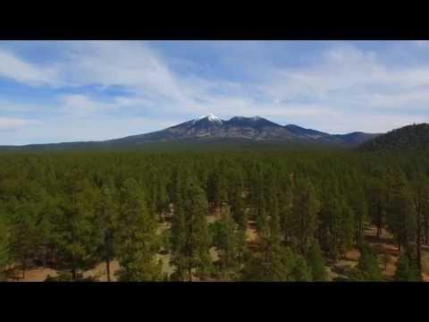 Humphreys Peak, Kachina Peaks, Coconino National Forest, Arizona