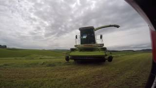 FIRST CUT SILAGE 2016