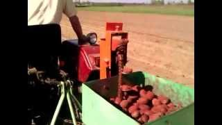 Картофелесажалка однорядная.mp4(Картофелесажалка однорядная в работе. На видео минитрактор Синтай 180 сажает 50 сотых картофеля с помощью..., 2012-04-30T17:16:22.000Z)