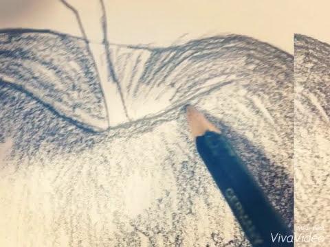 dibujar manzana a lpiz draw apple pencil  YouTube