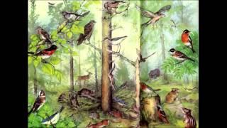 Сообщество, экосистема, биогеоценоз. Биология 9 класс.
