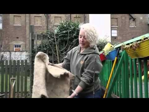 How to Plant Fruit Tree  l  how to plant fruit tree in clay soil  l  how to plant fruit tree seeds