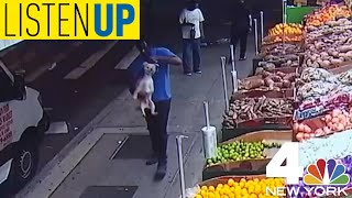 A Man was Caught on Camera Stealing NYC Woman's Childhood Dog