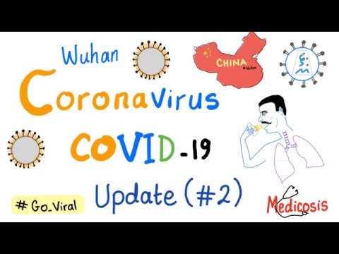 Coronavirus (COVID-19) Update #2 🦠😷[SARS-CoV-2]