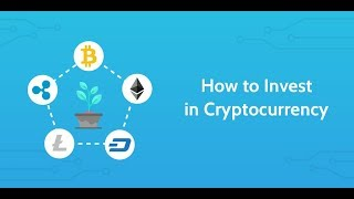4 Rules To Cryptocurrency Investing Success Insiders Strategy To Investing In Cryptocurrencies
