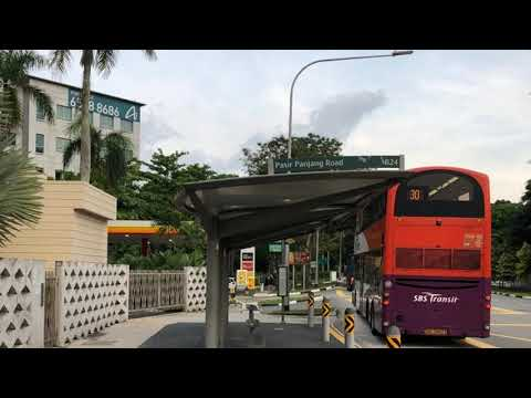 How to travel in Singapore bus – ScootAsia