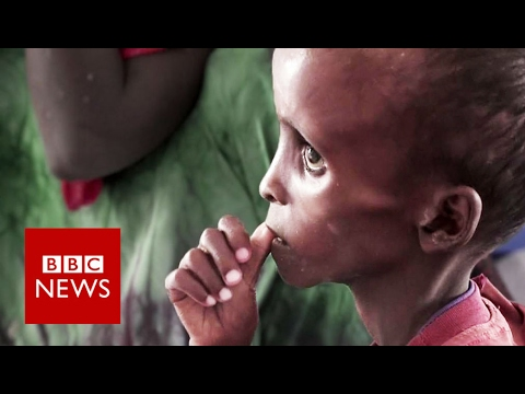 Somalia faces 'catastrophic' famine if drought continues - BBC News