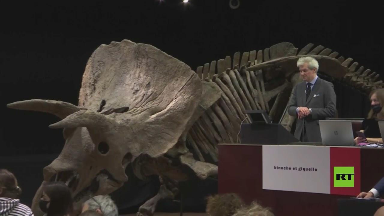 بيع أكبر ديناصور ثلاثي القرون في مزاد بأكثر من 6 ملايين دولار  - نشر قبل 1 ساعة