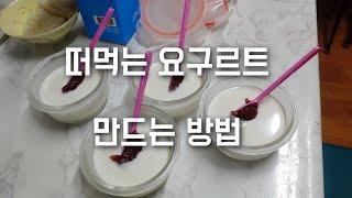 요구르트 만들기 발효 과정 떠먹는 유산균 만드는법