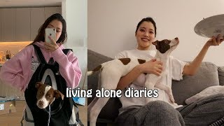 Living Alone Diaries | Adopting a puppy & dog mom life, Apartment hunting process, Life companion