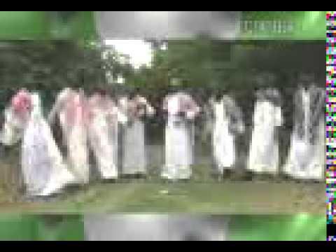 Shatan Borno Latest
