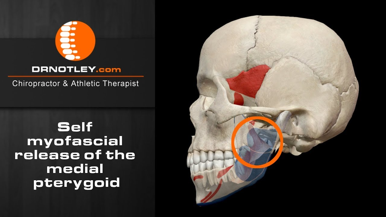 Self myofascial release of the medial pterygoid – http://www