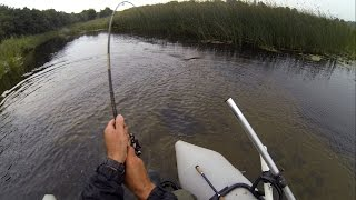 Small creek - huge pike: fishing wt Pocopoco micro popper. Рибалка макро щука на мікро поппер.