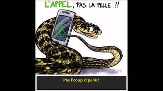 GHRA Rhône - Pas l'coup d'pelle (SOS Serpents)