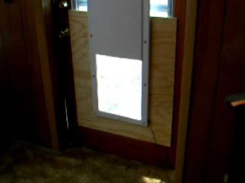 Trixie Coming In Doggie Door High Tech Pet Power Pet Electronic