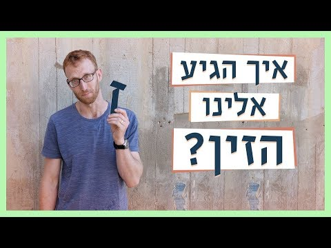 כאן עברית | תולדות הזין