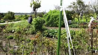 ウェザーリポート動画0923@滋賀県東近江市11:55☀︎ (ぽんぽんやま) thumbnail