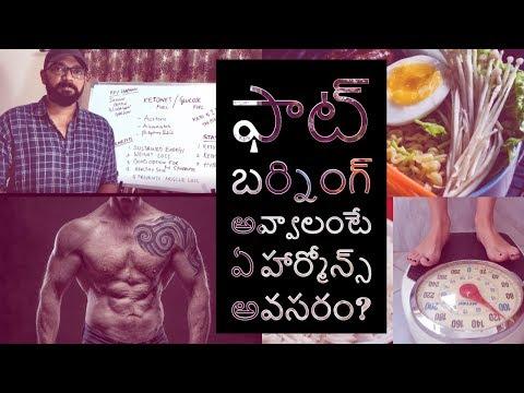 hormones-and-foods-(telugu)