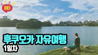 후쿠오카 자유여행 1일차 [요도바시 스시 오락실 갓챠샵…