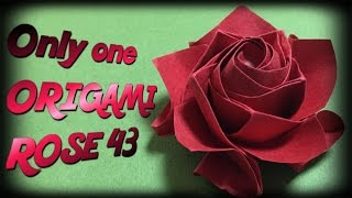 Only one origami rose43 達人折りのバラの折り紙43