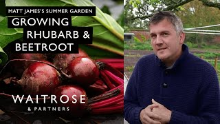 Matt James's Summer Garden | Rhubarb and Beetroot | Waitrose