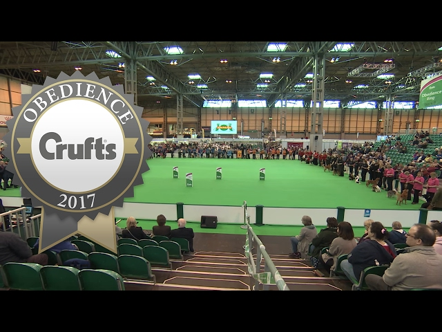 Inter-Regional Rally - Award Presentation - Part 1 | Crufts 2017