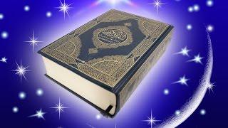 O Zbek Quron Tarjima 2 PORA 1 Tafsir 30 Pora To Liq