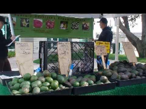 Channel Islands farmers mkt slide show.mpg