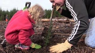 Video: The Next Generation of Trees - Tree Planting Day 2016