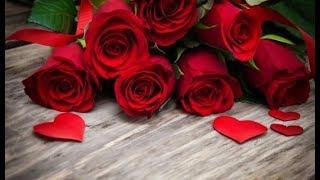 Sevgililer günü (ŞİİR) - Mehmet VASILOĞLU