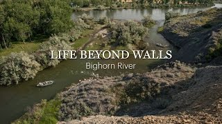 LIFE BEYOND WALLS - Bighorn River