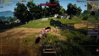 Black Desert Online test vid: A fast horse!