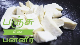 Paneer Recipe in Tamil  How to make Paneer at home in Tamil