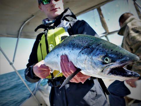 Lake Michigan Salmon Fishing - May 2020