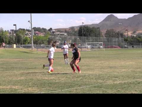 Ally 2014 Coast Soccer League