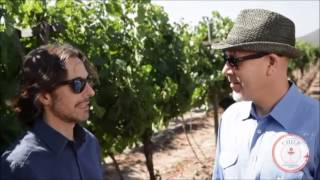 Wine Expedition Latin America: 1865 Single Vineyard