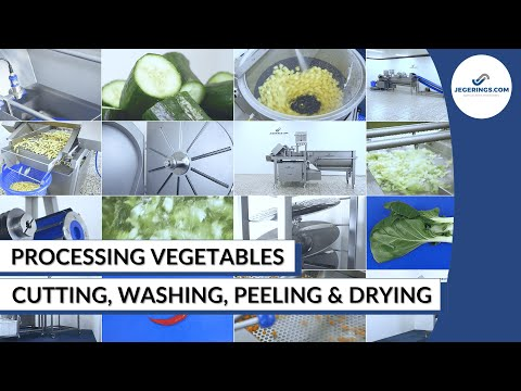 Vegetable Processing Machines | Peeling, Cutting, Washing, And Drying | Compilation Jegerings.com