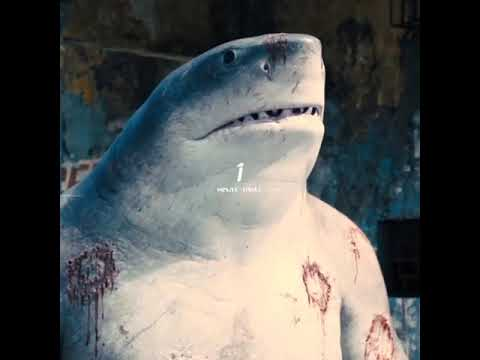 Download king shark 🔥                                        movie name - the suicide suqed