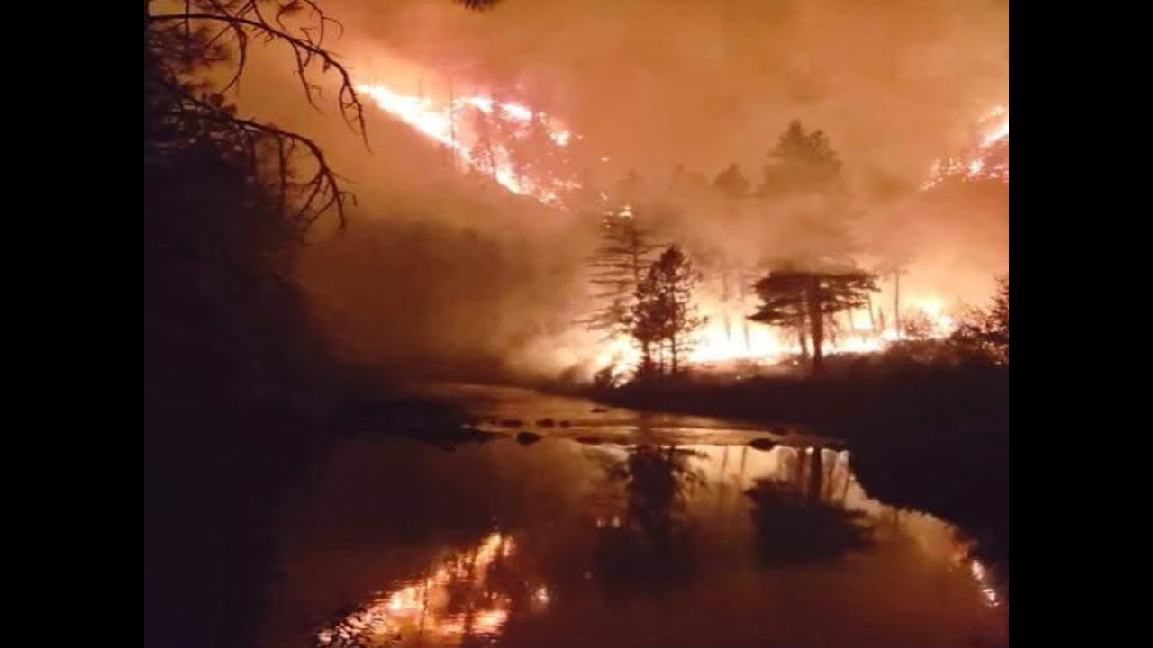'Hard to predict' Lake Fire in Southern California grows to 11000 ...