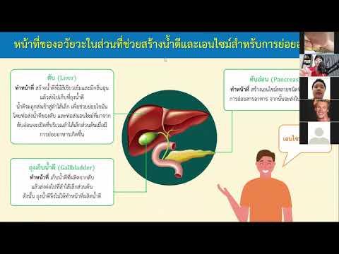 หน้าที่ของอวัยวะในระบบย่อยอาหาร ตอนที่ 2 - วิทยาศาสตร์ป.6