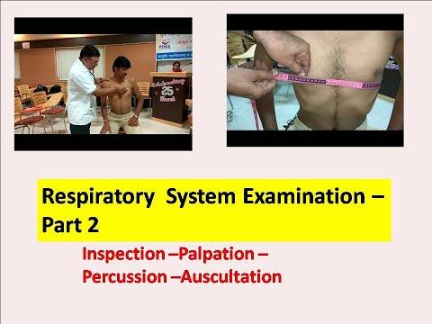 Examination Of Respiratory System  Part 2