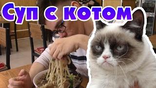 Как я съел кота. Китайская кухня.