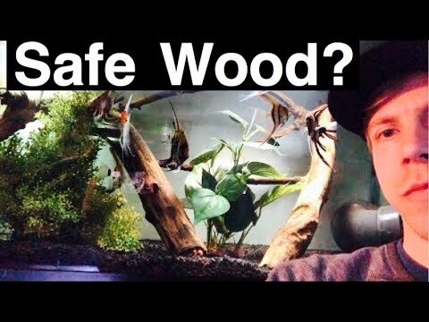 Safe Woods For Aquariums