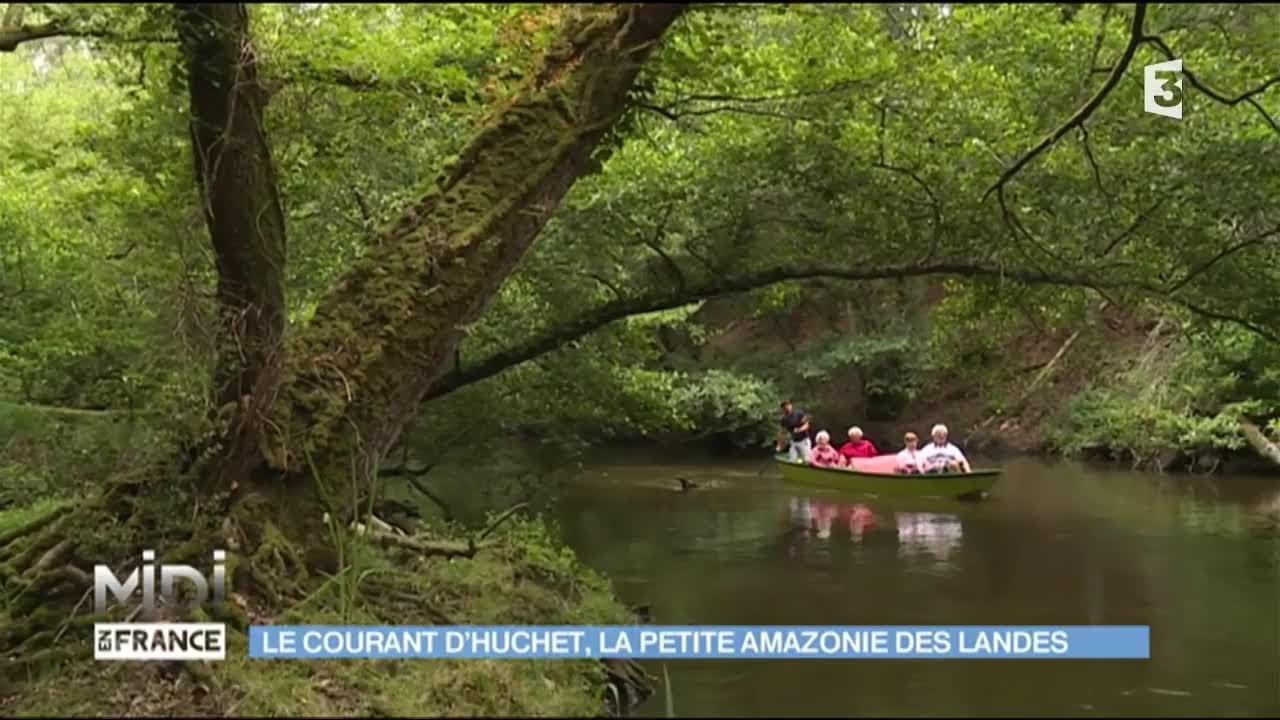 Le courant d 39 huchet la petite amazonie des landes youtube for Piscine la petite amazonie